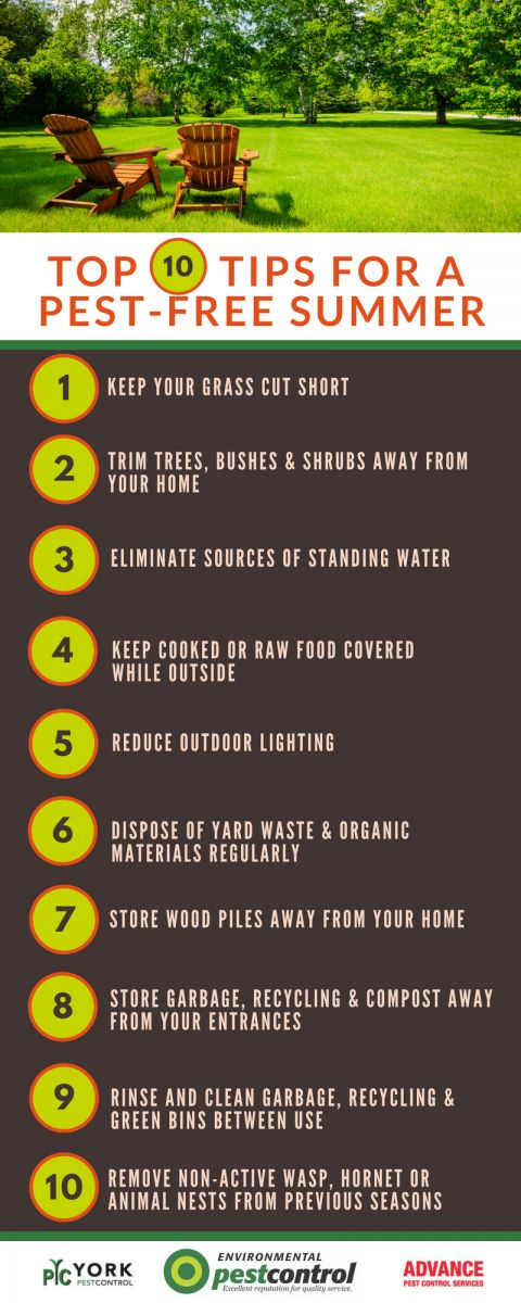An infographic that lists 10 things you can do to prevent summer pests.